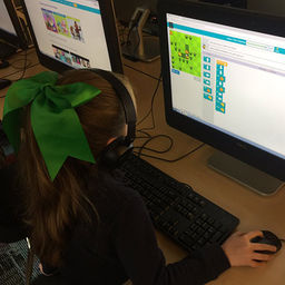 Learning to Code in Primary School
